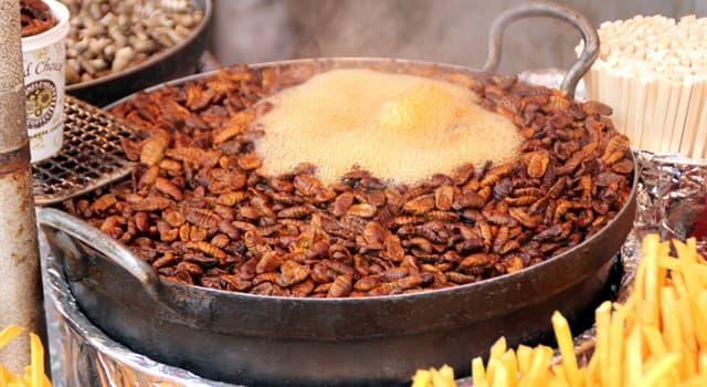 Cultura Pregunta Trivia: ¿De qué país de Asia oriental es popular el snack llamado beondegi?