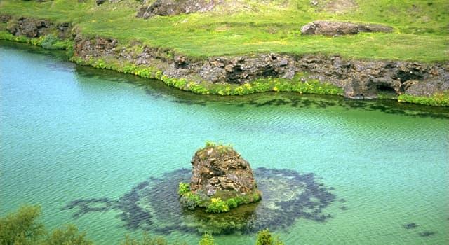 Geografía Pregunta Trivia: ¿Qué significa en islandés el nombre del lago Myvatn?