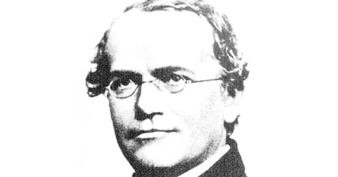 Wissenschaft Wissensfrage: Gregor Mendel gilt als Begründer der ... ?