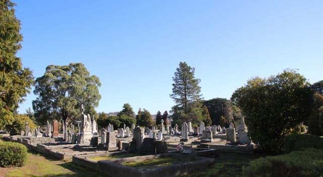 Sociedad Pregunta Trivia: ¿Qué músico famoso está enterrado en el cementerio Père Lachaise de París además de Jim Morrison?