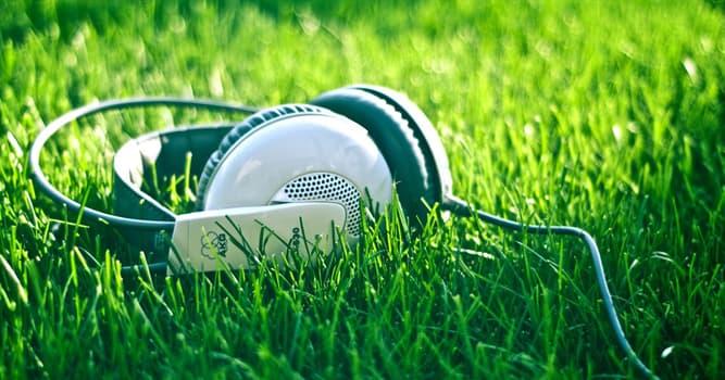 Kultur Wissensfrage: In welchem Land entstand die Musikrichtung Reggae?