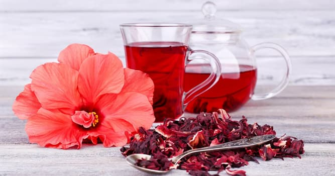 Culture Trivia Question: In which country is hibiscus tea considered to be the national drink?