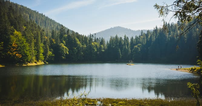 Geography Trivia Question: In which country is National Nature Park Synevir located?