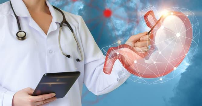 Сiencia Pregunta Trivia: ¿Qué especialista deberías ver si tienes problemas intestinales?