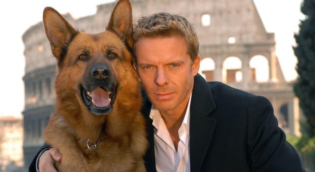 Películas Pregunta Trivia: ¿Cómo se llamaba la serie de TV austríaca de comedia-drama que fue emitida desde 1994 hasta 2004?