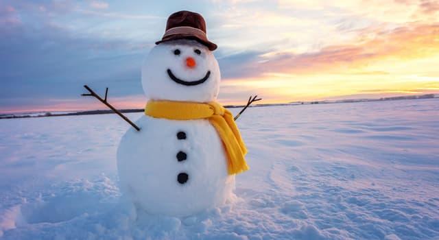 Sociedad Pregunta Trivia: ¿Qué se usa tradicionalmente para hacer la nariz de un muñeco de nieve?