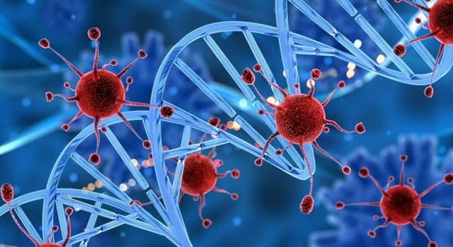 Сiencia Pregunta Trivia: ¿Para qué rama de la medicina es importante el descubrimiento del gen VSIG1?