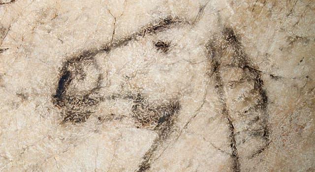 Cultura Pregunta Trivia: ¿Por qué destaca la Cueva de Tito Bustillo?