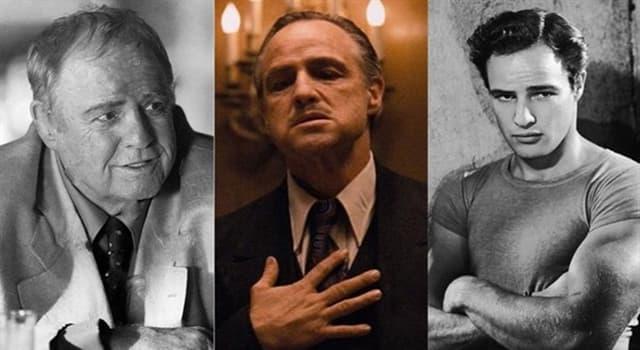 Películas Pregunta Trivia: ¿Por qué no acudió Marlon Brando a recoger el Óscar al mejor actor en 1973?