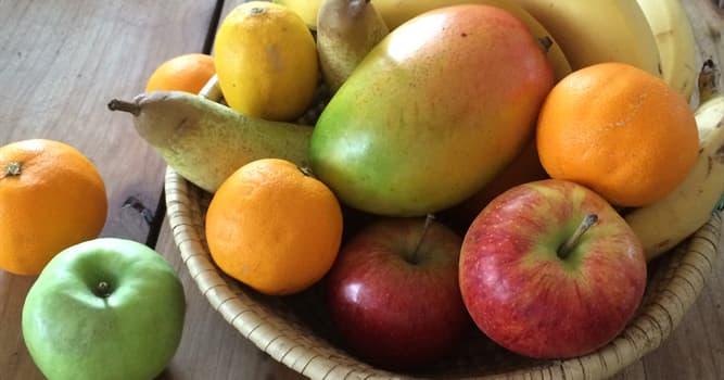 Wissenschaft Wissensfrage: Welche der aufgelisteten Früchte enthält am meisten Fett?