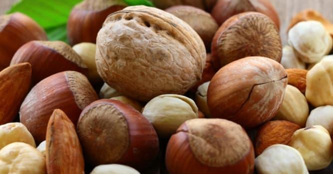 Natur Wissensfrage: Welche dieser Nüsse ist am fettreichsten?