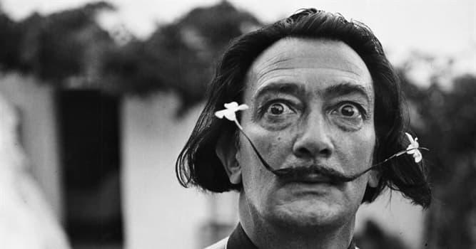 Geschichte Wissensfrage: Welche Tiere hatte Salvador Dalí als Haustiere?