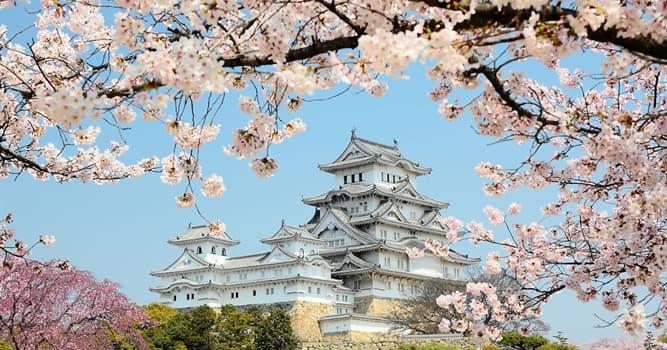 Kultur Wissensfrage: Welche der japanischen Künsten ist chinesischer Herkunft?