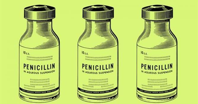 Geschichte Wissensfrage: Wer entdeckte Benzylpenicillin (Penicillin G)?