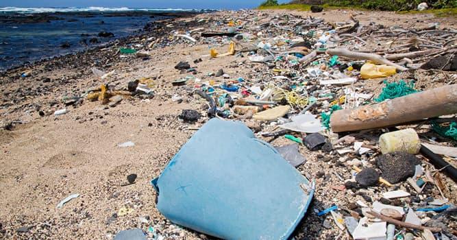 Сiencia Pregunta Trivia: ¿Cómo se llama el estudio de los desechos y la basura producida por el ser humano?