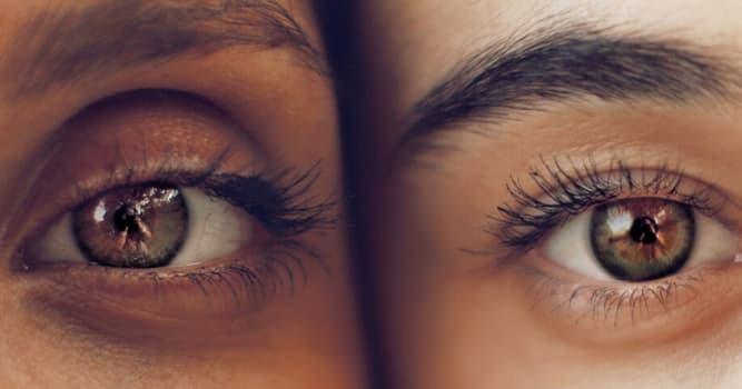 Сiencia Pregunta Trivia: ¿Cuál de las siguientes es una enfermedad de los ojos?