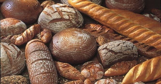 Gesellschaft Wissensfrage: Wie viele Brotsorten gibt es in Deutschland?