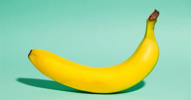 Natur Wissensfrage: Zu welcher Kategorie der Früchte gehören Bananen?
