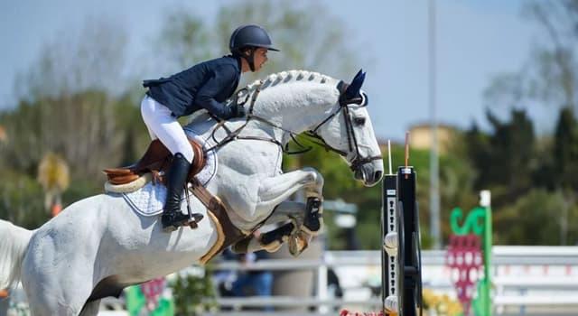 Deporte Pregunta Trivia: ¿Cuál de las siguientes es una disciplina de la equitación?