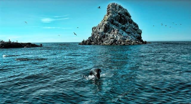 Geografía Pregunta Trivia: ¿Cuál es la isla más grande de la república mexicana?