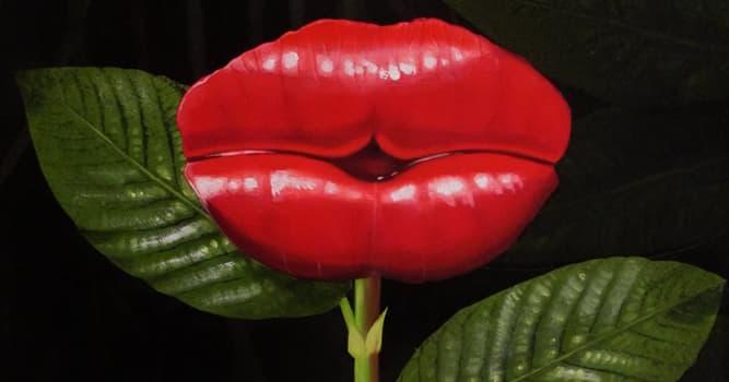 Naturaleza Pregunta Trivia: ¿Cuáles dos, entre otros, son nombres comunes de la planta Psychotria elata?