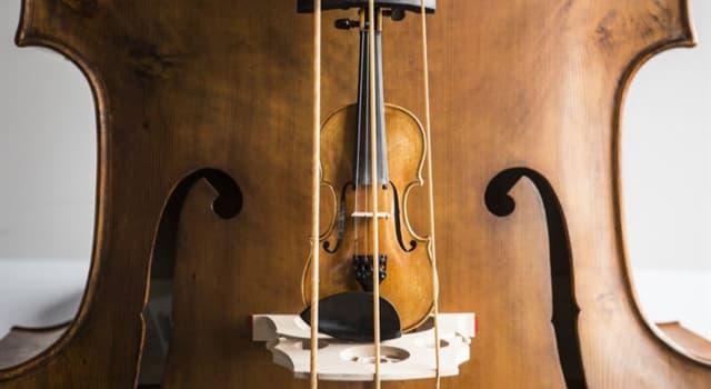 Cultura Pregunta Trivia: ¿Cuánto mide aproximadamente un octabajo?