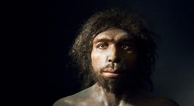 Sociedad Pregunta Trivia: ¿Dónde se descubrió el Homo antececessor?