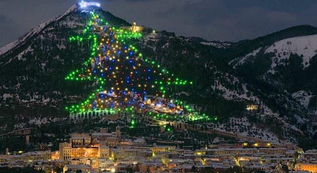 Cultura Pregunta Trivia: ¿Dónde se encuentra el árbol navideño más grande del mundo?