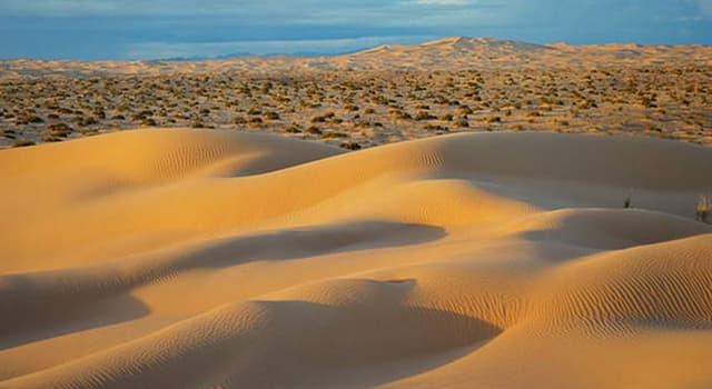 Geografía Pregunta Trivia: ¿Dónde se encuentra el gran desierto de Altar?