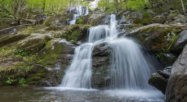 Geografía Pregunta Trivia: ¿En qué estado de los Estados Unidos se encuentra el Parque Nacional Shenandoah?