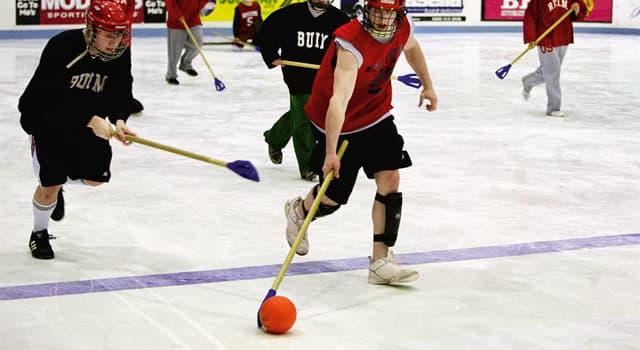 """Deporte Pregunta Trivia: ¿Qué deporte se juega con una pequeña pelota y una """"escoba""""?"""