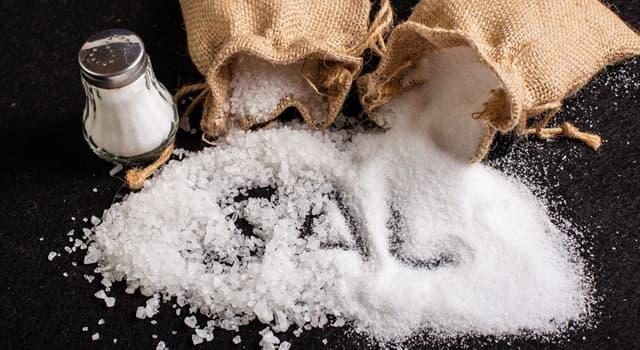 "Historia Pregunta Trivia: ¿Qué fue la ""Marcha de la Sal""?"