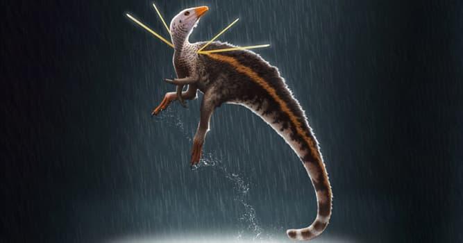 Сiencia Pregunta Trivia: ¿Qué nombre han dado los científicos a un nuevo dinosaurio descubierto en la Formación Crato en Brasil?