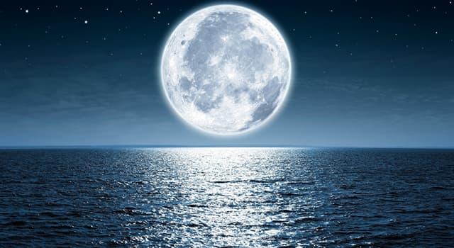 "Cultura Pregunta Trivia: ¿Quién es el autor de ""Serenata a la luz de la luna""?"