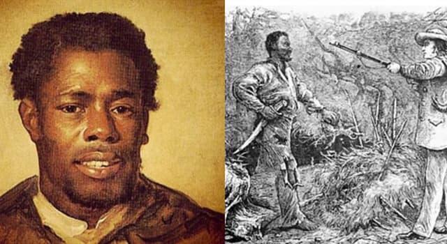 Cultura Pregunta Trivia: ¿Quién fue Nathaniel Turner?