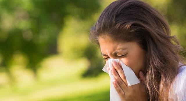 Сiencia Pregunta Trivia: ¿Qué causa el reflejo de estornudar en un 18-35% de la población mundial?
