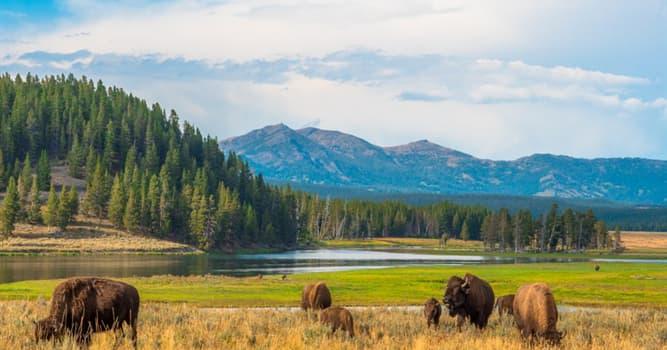 Geografía Pregunta Trivia: ¿Cuál es el parque nacional más grande del mundo?