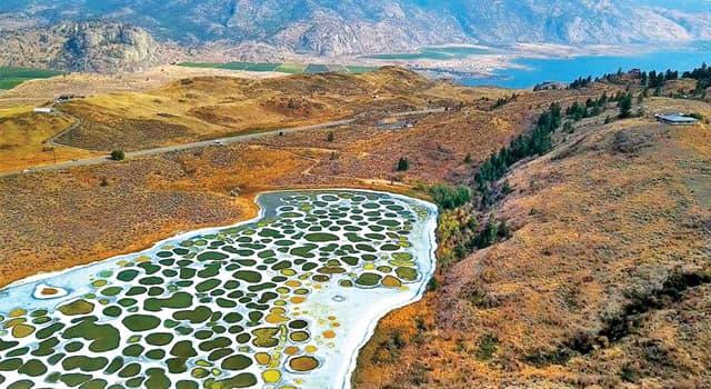 Naturaleza Pregunta Trivia: ¿Qué causa el singular patrón del Lago Manchado de Canadá?