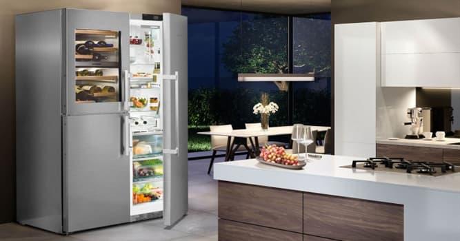 Sociedad Pregunta Trivia: ¿Cuál de los siguientes es un elemento que forma parte del refrigerador?