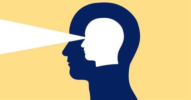 Сiencia Pregunta Trivia: ¿Cuál es la habilidad para conocer algo sin la intervención de la razón?