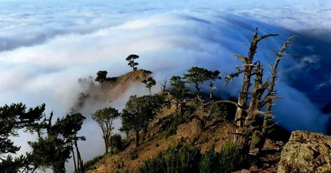 Geografía Pregunta Trivia: ¿A qué país pertenece la Isla Guadalupe?