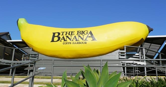 Geografía Pregunta Trivia: ¿En qué país existe un puerto de mar llamado Banana?