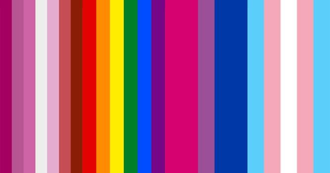 społeczeństwo Pytanie-Ciekawostka: Co oznacza skrót LGBT?