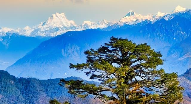 Geografía Pregunta Trivia: ¿Cuál es la montaña más alta que queda por conquistar en el mundo?