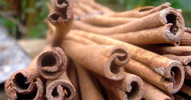 Naturaleza Pregunta Trivia: ¿De qué país asiático es originario el árbol de la canela?