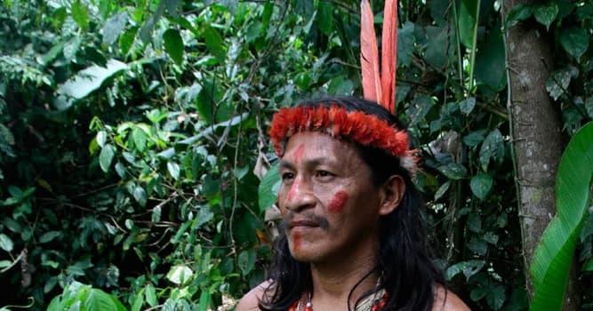 Cultura Pregunta Trivia: ¿Dónde viven los Taromenanes?