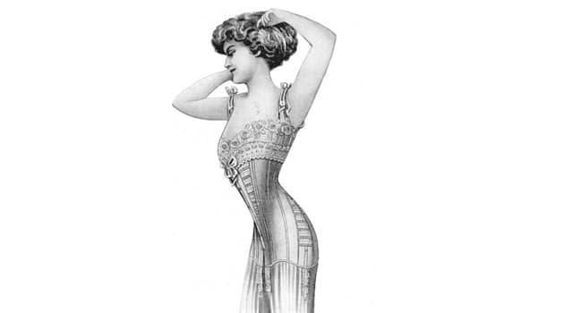 Cultura Pregunta Trivia: ¿Qué insecto da nombre a una silueta femenina con una cintura muy pequeña?