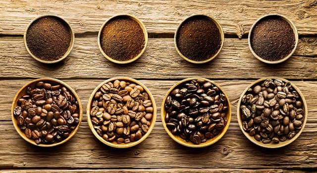 Sociedad Pregunta Trivia: ¿Cuál es la especie de café más común?