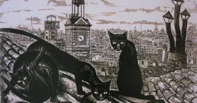 Sociedad Pregunta Trivia: ¿Por qué a los madrileños se les llama gatos?