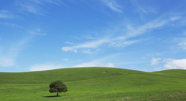 Сiencia Pregunta Trivia: ¿Por qué el cielo es azul?